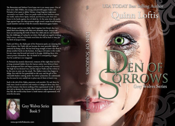 DoS cover with synopsis for reveal
